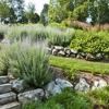 Creative Rockeries and Landscaping