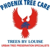 Phoenix Tree Care / Trees By Louise