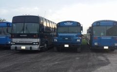 Jam'z Buses