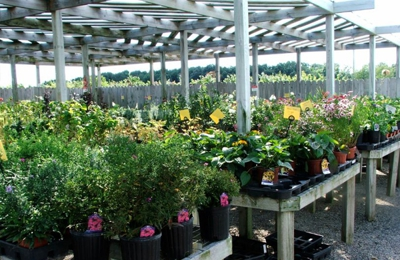Shaner Avenue Nursery - Rockford, MI