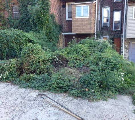 Easy Care Landscaping - Philadelphia, PA