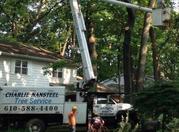 Charlie Nansteel Tree & Excavation LLC - Bangor, PA