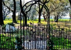 Metals and Nature - Plant City, FL