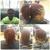 Eccentric 11 Hair Studio