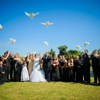 St Louis Doves Release Company