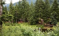 Mt Hood Village RV Resort