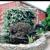 Red Mill Landscape & Nursery