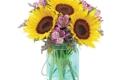 Sherwood Florist - Spring Hill, FL