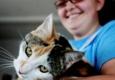 Licking County Humane Society - Heath, OH