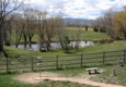 Sally Terroux Training Kennel and Classes - Arvada, CO