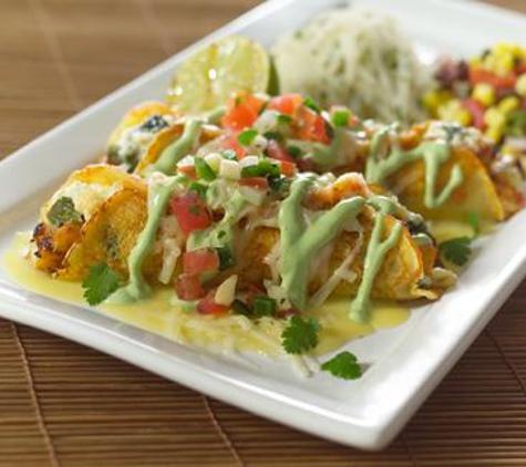 Bristol Seafood Grill - O Fallon, MO