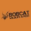 Bobcat Wildlife & Pest Mgmt
