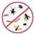 Bug & Weed Mart Tempe