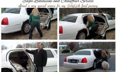Eagle Limousine & Chauffeur Company