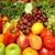 Commercial Fruit