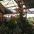 Nebraska Nursery & Color Gardens