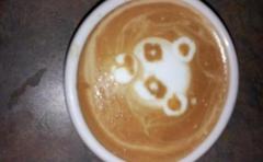 Honduras Coffee Company