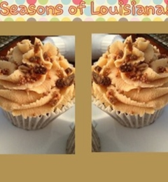 Seasons Of Louisiana, LLC - New Orleans, LA