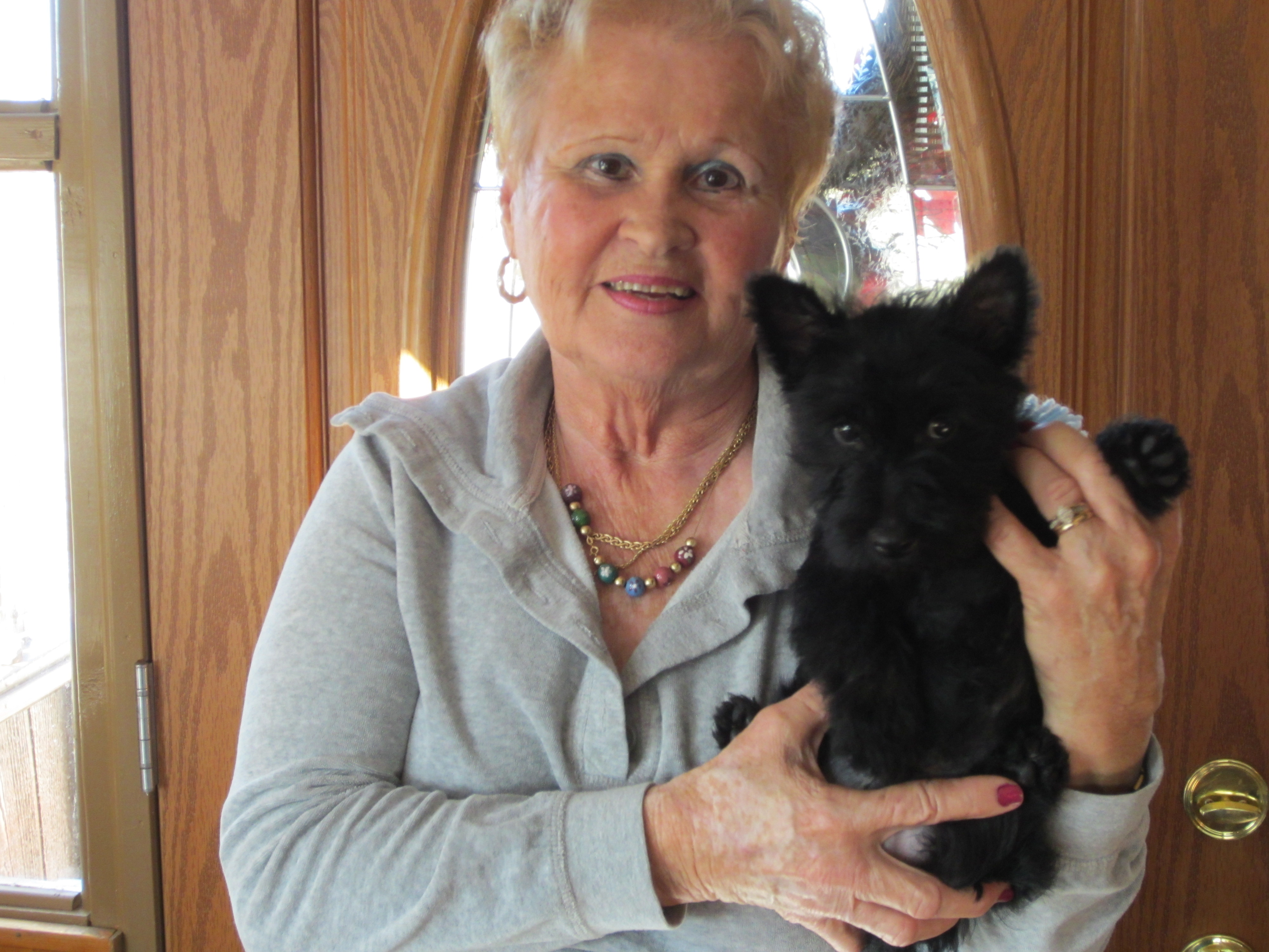 Henry And Donna Evarts Scottish Terriers 18 Lakeview Dr