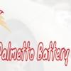 Palmetto Battery Pros