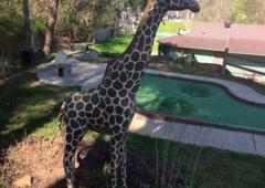 Tropical Gardens Mini Golf - Asheville, NC