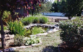 View Details · Tracyu0027s Lawn U0026 Landscaping Service