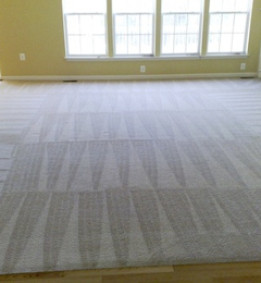 Barney's Eco Clean Carpet Cleaning Seattle - Seattle, WA