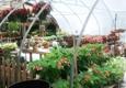 King's Greenhouse Garden Center - Matthews, NC