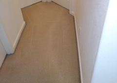 Absolute Carpet Cleaning Inc