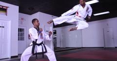Detroit Martial Arts Institute - Detroit, MI