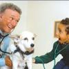 Brenner Animal Hospital - Robert Brenner DVM