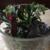 KM Designs Florist