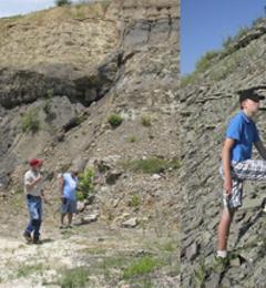 Fanily Rocks & Fossil Field Trips - Hendersonville, NC