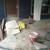 Remodel And Repair Contractor
