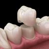 D&P Dentistry