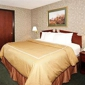 Comfort Suites - Madison, WI