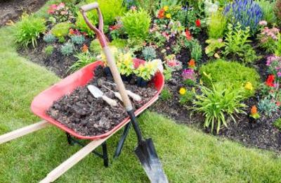 P C's Nursery & Landscaping - Dothan, AL
