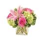 Nacogdoches Floral Company - Nacogdoches, TX