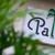The Palm Orlando