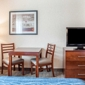 Comfort Inn & Suites - Hamburg, NY
