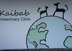 Kaibab Veterinary Clinic - Flagstaff, AZ
