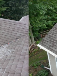 Pro Roof Cleaning