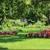Castillo Tree & Lawn Service Inc