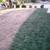 instantGreen Grass