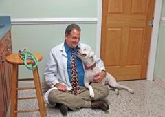 Lake Seminole Animal Hospital - Seminole, FL