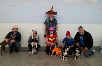 Camp Canine Llc - Bristol, CT