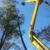 A Plus Tree & Crane Services Inc