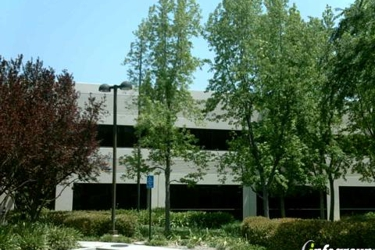 Thorson & Associates Insurance Services Inc