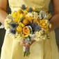 Tahoe Blooms