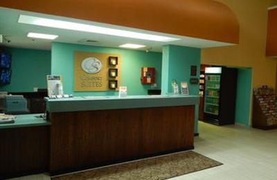 Comfort Suites Tampa - Brandon - Tampa, FL